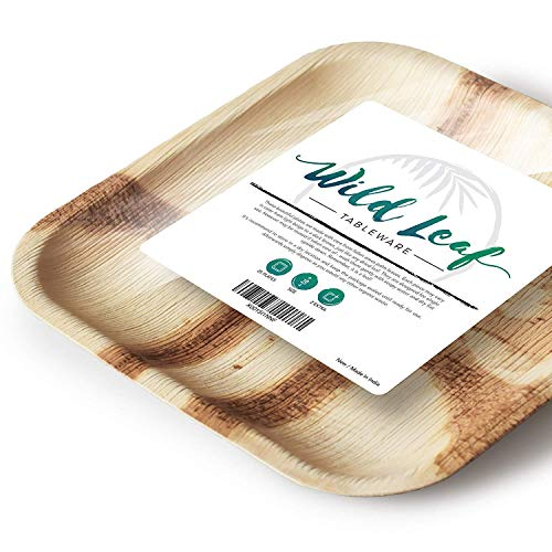 Disposable Palm Leaf Bamboo Plates - Compostable and Biodegradable Party Plates - Sturdy and Eco-Friendly Alternative to Wood or Plastic Dinnerware - 10 Inch Square, 25 Pack - by Wild Leaf Tableware