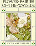 Flower Fairies of the Wayside (The original flower fairy books)