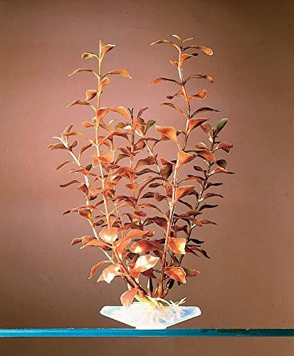 - Aquarium Décor Plastic Plants (Blooming Ludwigia (RED/GREEN), 7 inch)