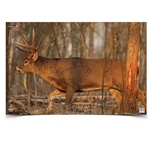 BWC 37481 EZE-Scorer Deer 23x25 Deer Vitals Paper Target