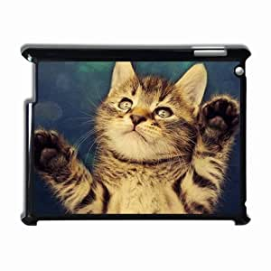 Customized Back Cover Case For iPad 2 3 4 Hardshell Case, Black Back Cover Design Cat Personalized Unique Case For iPad 2