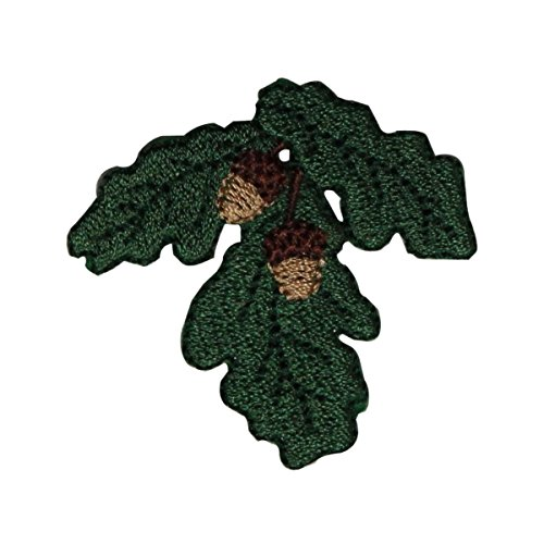 ID 7198 Green Leaf With Acorns Patch Pine Nature Embroidered Iron On - Applique Acorn