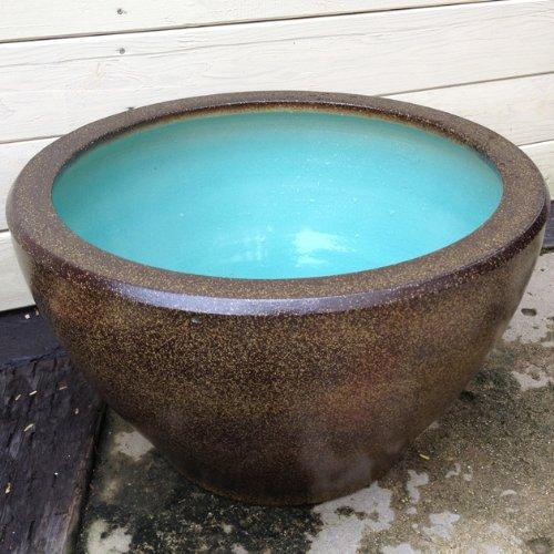 睡蓮鉢/はす鉢/めだか鉢(15号・深鉢)【金ソバ】
