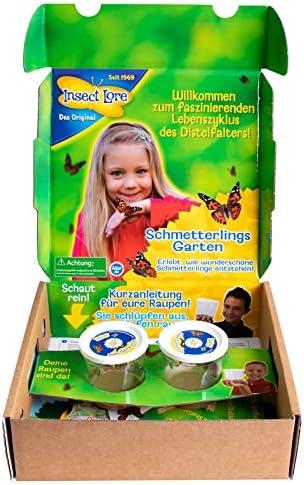 planetextra Schmetterlingsgarten Pop-up Edition Schmetterlinge z/üchten inklusive 8-10 Raupen