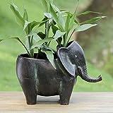 Elephant Planter Africa Safari Flower Box Plant Holder Pot Zoo Animal Porch 12'' W ✅
