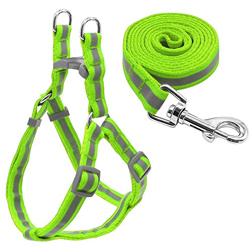 LOVELY 7 Colors Nylon Reflective Dog Harness Leash Lead Set For Small Medium Dogs Puppy Green S by LOVELY (Image #1)
