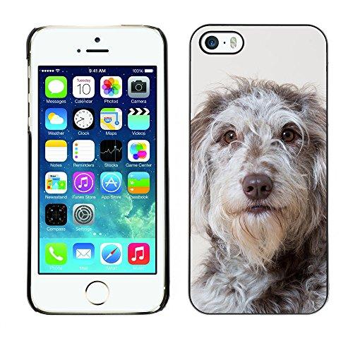 Premio Sottile Slim Cassa Custodia Case Cover Shell // F00011961 chien // Apple iPhone 5 5S 5G