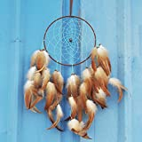 Artilady 8inch handmade feather dream catcher wall decoration (brown)