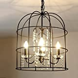 DMMSS American Country Bird Cage Vintage Iron Chandelier Crystal Lamp Beautiful Creative Living Room Dining Room Hotel Villa Lights