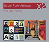 Fuzzy Logic/Radiator