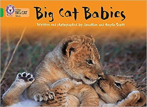 Big Cat Babies: Band 05/green Descargar Epub Gratis
