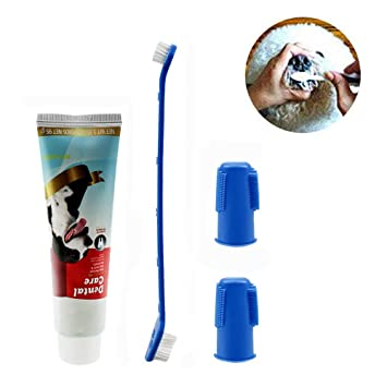 JLCYYSS Kit de Limpieza de Dientes para Perro/Gato, Cepillo de Dientes y Pasta de Dientes para Perros y Gatos, Kit de higiene Dental: Amazon.es: Deportes y ...