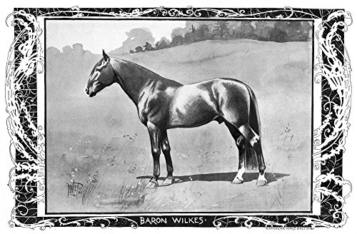 Baron Wilkes 1902 Namerican Standardbred Racehorse Illustration With Portraits Of His Trainer And Driver Myron E Mchenry (Left) And His Owner Manley E Sturges 1902 Poster Print by (18 x 24)