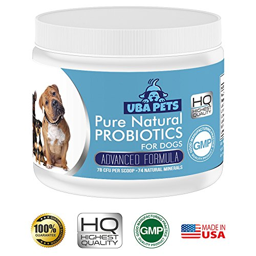 Cheapest Uba Pets Probiotics for Dogs - Helps Combat Bad Breath, Poor Digestion and Skin Allergies. Daily Supplement with 74 Natural Minerals Check this out.