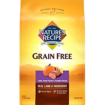 Nature's Recipe Grain Free Easy to Digest Lamb, Sweet Potato and Pumpkin Recipe Dry Dog Food, 12 lb