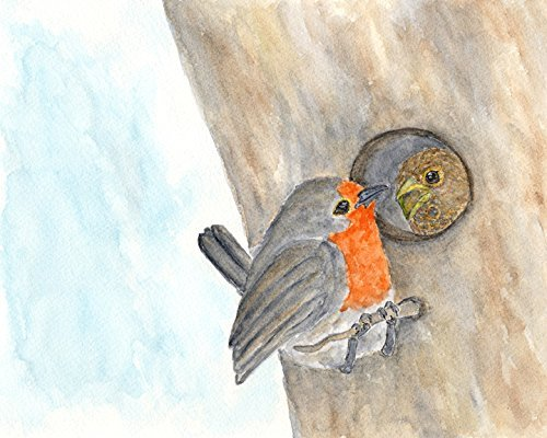 ting children's illustration english robin bird art (English Thimble)