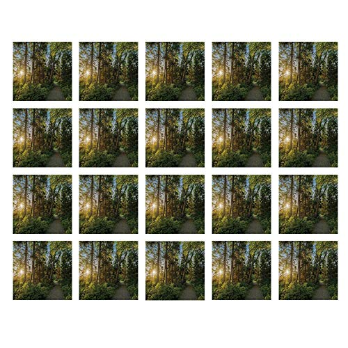 YOLIYANA Landscape Waterproof Ceramic Tile Stickers,National Park in Cape Breton Highlands Canada Forest Path Trees Tranquility Photo for Kitchen Living Room,One Size