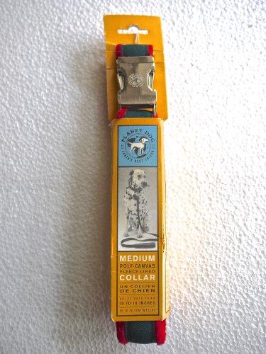 Planet Earth Dog Collar