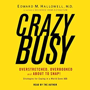 CrazyBusy Audiobook