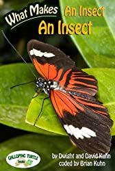 What Makes: An Insect an Insect