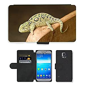 PU LEATHER case coque housse smartphone Flip bag Cover protection // M00111613 Animal Camaleón Verde Madagascar // Samsung Galaxy S5 S V SV i9600 (Not Fits S5 ACTIVE)