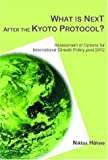 What Is Next after the Kyoto Protocol?, Niklas Hohne, 9085940052