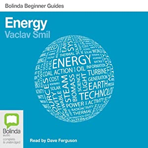 Energy: Bolinda Beginner Guides Audiobook
