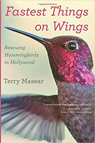 song of the hummingbird book review