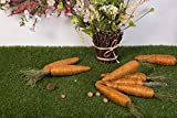 Evertrust Realistic Orange Foam Carrots Easter Oranment Rabbits Gift Decoration Easter Party Home Decor (Pack of 8) (Jute Thread)