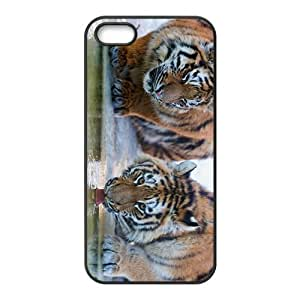King Of Forest Tiger Hight Quality Plastic Case for Iphone 5s