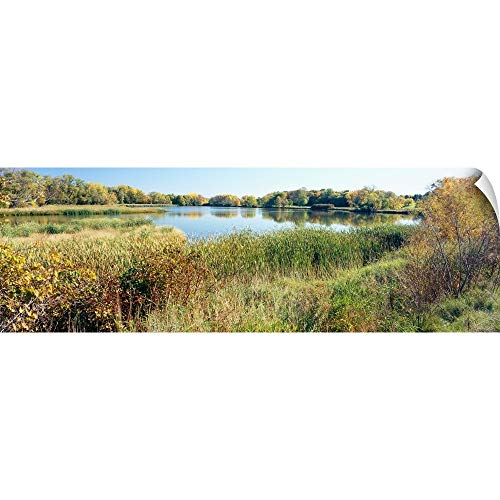 "CANVAS ON DEMAND Wall Peel Wall Art Print Entitled Reflection of Trees in Water, Odana Hills Golf Course, Madison, Dane County, Wisconsin 72""x24"""
