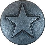 100 Pewter Small Star Upholstery Framing Tacks, Decorative Nails 5/8 Dia Long, Western Texas