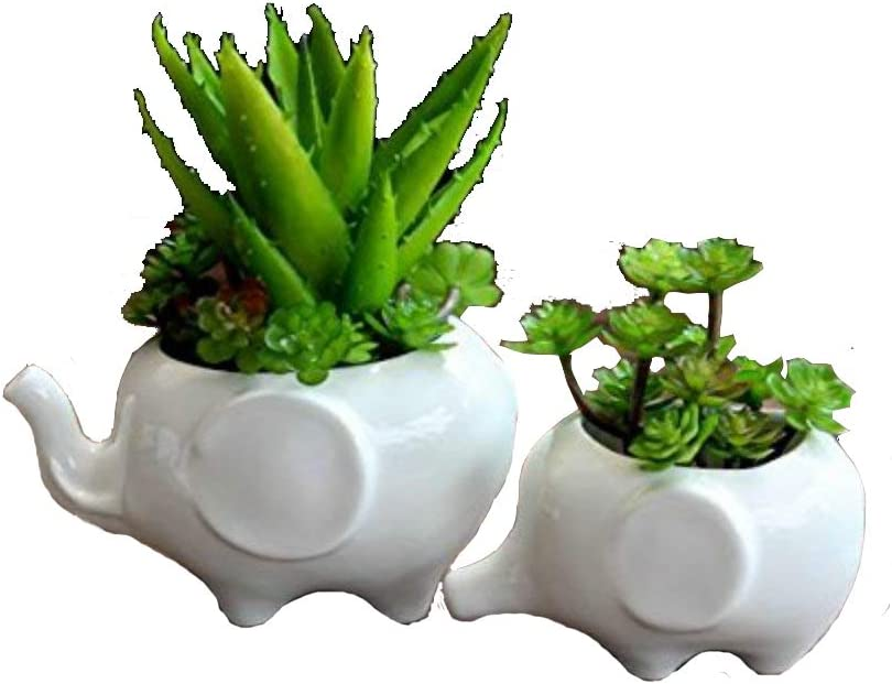 Sea Star Set of 2 Cute Elephant Flower Pot,Modern White Ceramic Succulent Planter Pots Tiny Flower Plant Containers Elephant