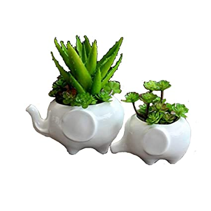 225 & Sea Star Set of 2 Cute Elephant Flower PotModern White Ceramic Succulent Planter Pots/Tiny Flower Plant Containers (Elephant)