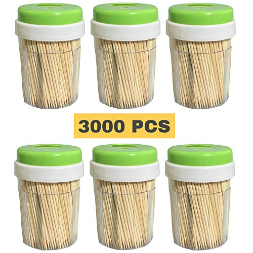 Bamboo Wooden Toothpicks (3000 Bulk Pack) - Round, Strong, Splinter-Free for Teeth and Appetizers