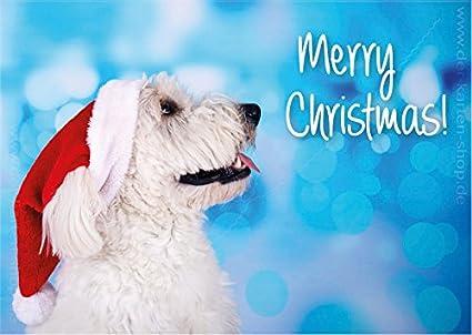 Lot de 3 A6 animaux Carte postale, carte, carte de Noël Joyeux