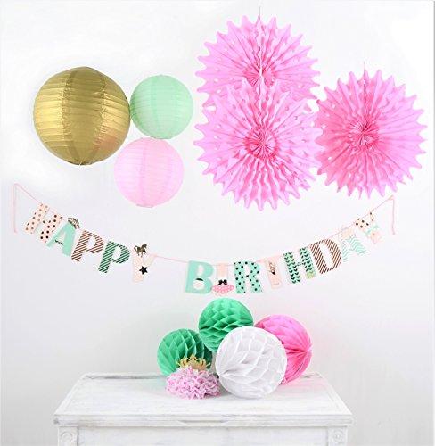 PAPER JAZZ girl princes birthday decoration banner honeycomb lantern fan kit (PRINCESS BANNER) (Princess Streamer)