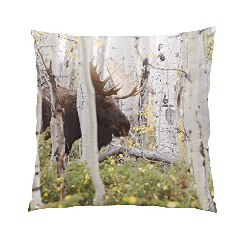 Suklly Papa Moose in The Aspens Cabin Plush Hidden Zipper Home Sofa Decorative Throw Pillow Cover Cushion Case 20x20 Inch Square Two Sides Design Printed ()
