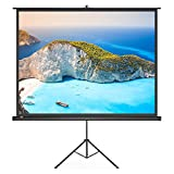 PC Hardware : Projector Screen with Stand, TaoTronics Indoor and Outdoor Movie Screen 100 Inch Diagonal 4:3 with a Premium PVC Matte Design (Wrinkle-Free, Easy to Clean, 1.1 Gain, 160 Degree Viewing Angle)