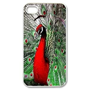 High Quality Phone Back Case Pattern Design 16Peacock Open It's Cock- For Iphone 4 4S case cover