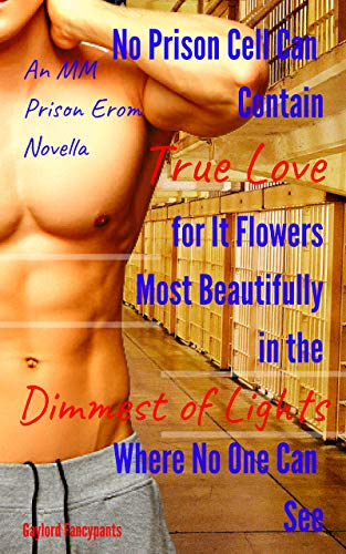 (No Prison Cell Can Contain True Love for It Flowers Most Beautifully in the Dimmest of Lights Where No One Can See It: An MM Prison Erom Novella (Convicts ... Cells Like Irreverent Radiators Book 1))