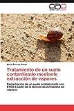Tratamiento de un Suelo Contaminado Mediante Extracción de Vapores, Marta Alvarez Bauzá, 3846566020