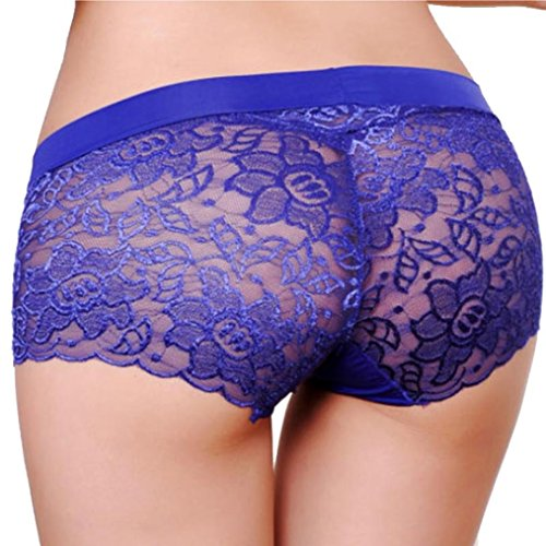 Sikye Womens Sexy Underwear in Breathable Lace  -  Blue
