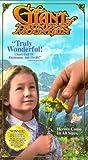 Giant of Thunder Mountain/Slipsleeve [VHS]