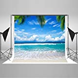 Kate 10x10ft(3x3m) Beach Backdrop Sea Blue Sky Background Palm Trees Sunshine Summer Background for Photography Photo Studio No Wrinkel Cloth Backdrop YY00604