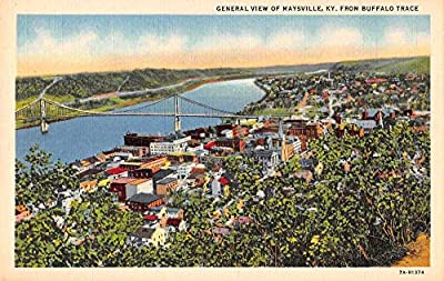 Maysville Kentucky General View Linen Vintage Postcard JB626834