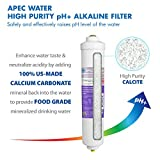 """APEC Water Systems PHPLUSKIT-38 10"""" US MADE"""