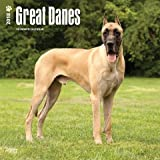 2018 GREAT DANES WALL CALENDAR
