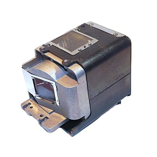 P Premium Power Products RLC-059-ER Compatible Projector Lamp Accessory by P Premium Power Products (Image #1)