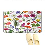 "little honey hydrangea Bath Mat,Types of Flowers Vivid Colored Roses Tulips Daisies Hydrangeas Lilacs Artwork Print,Door Mat Indoors,Multicolor,Size:16""x24"""